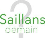 L'approbation du PLU de la commune de Saillans sera exécutoire à partir du 3 mai 2020.
