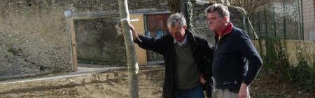 Un nouvel arbre du rez-de-jardin de la Maison de Santé