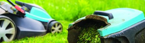 Déchets végétaux : quelques conseils pour les recycler sans bouger de chez soi
